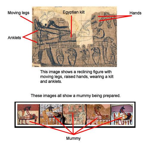 Mummy.fac.1.comparison.jpg